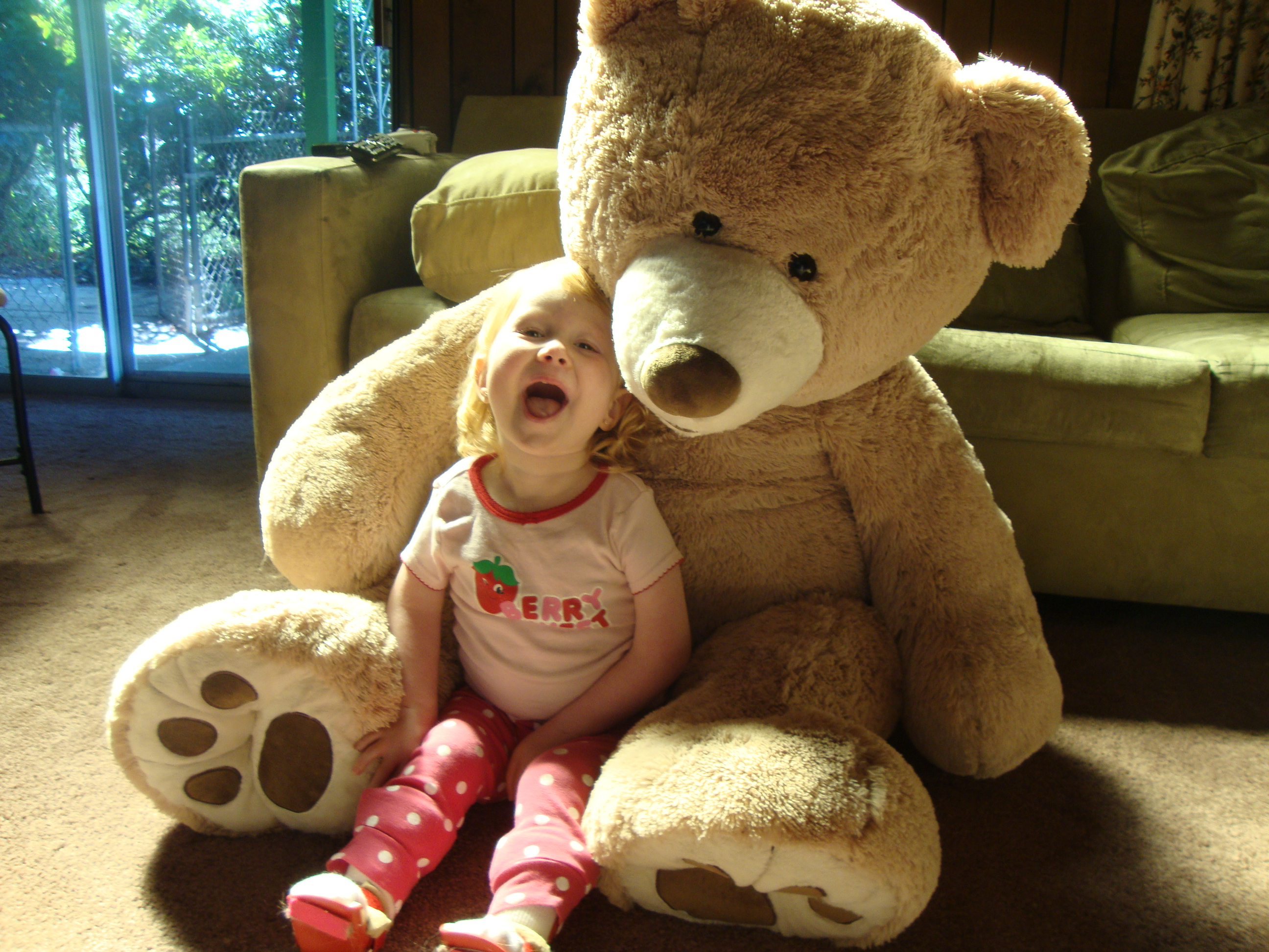 mr bear Mr bear international co, ltd from taiwan, with products under the category of.